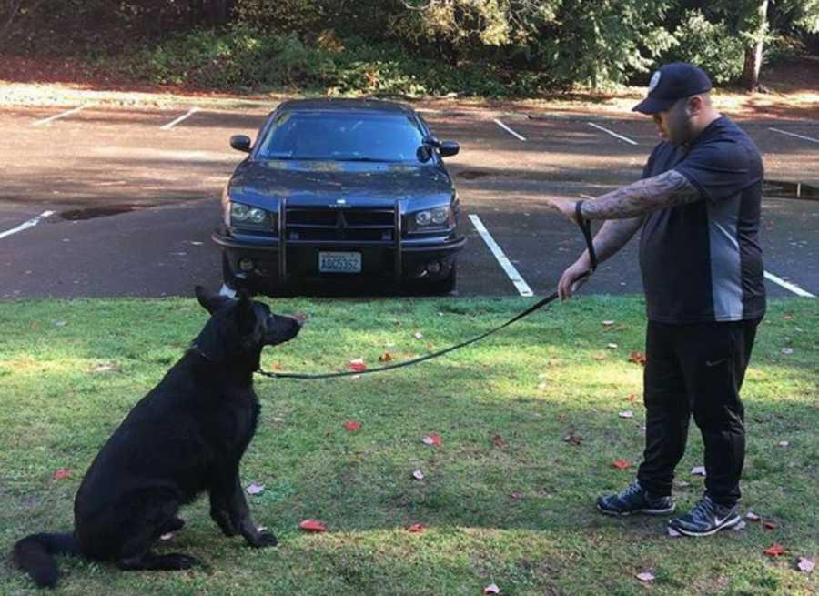 In Defense of Balanced Dog Training
