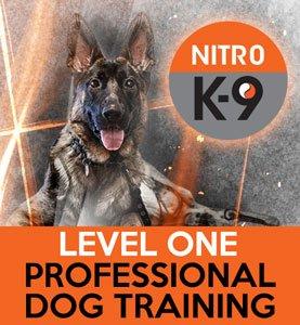Nitro K9 Level 1 Professional Dog Training